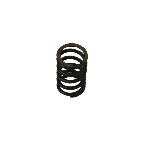 Valve spring 25/30 hp/ Okrasa styleeach - Engine - Lower block - Cilinder heads (XView 5-04)  - Generic