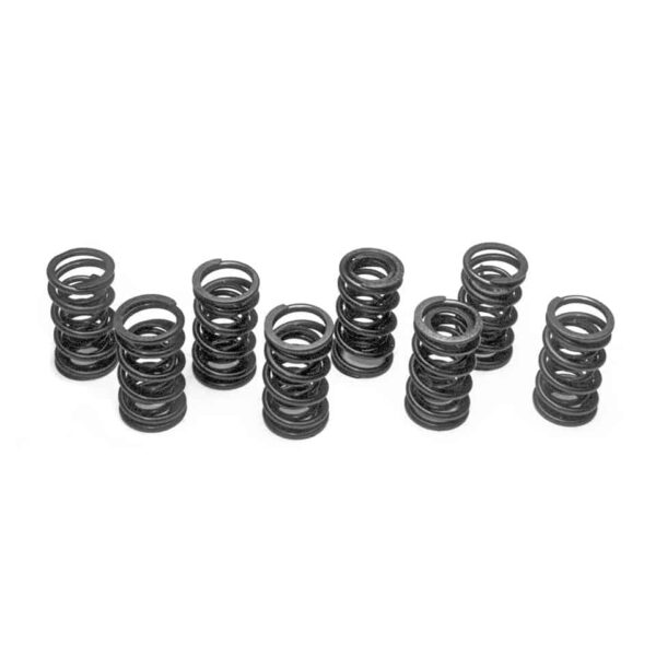 Extra strong dual valve springs8 pieces - Engine - Lower block - Cilinder heads (XView 5-04)  - Generic