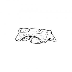Seat rail guide, front - Interior - Seats and accessories - Seat rail bushings  - Generic